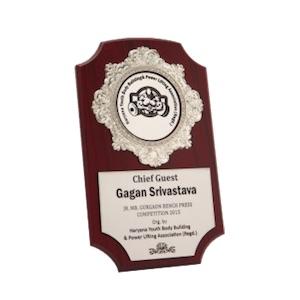 Buy now Shield Award Silver Vertical Design